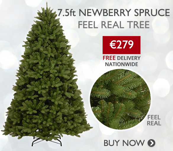 7.5ft Newberry Spruce Christmas Tree